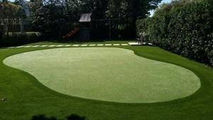 private phoenix backyard putting green