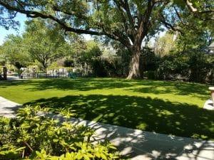 synthetic turf landscaping backyard